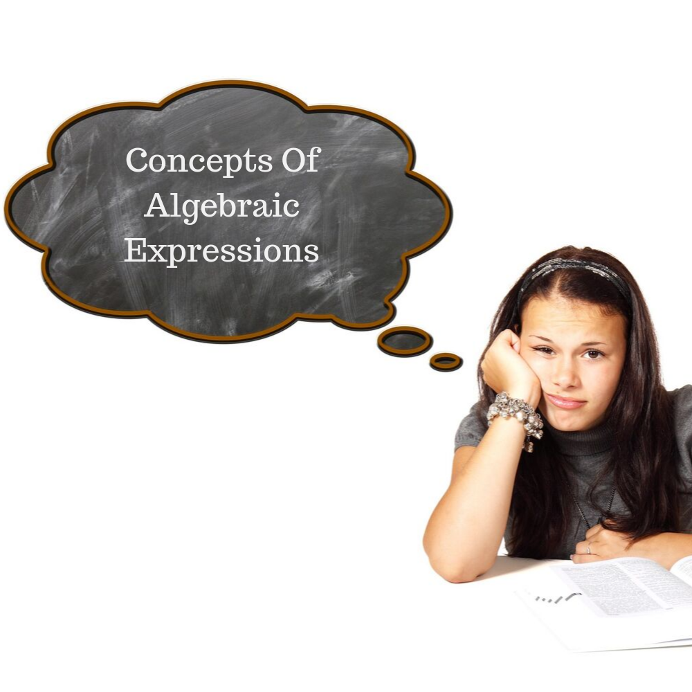 concepts of algebraic expressions